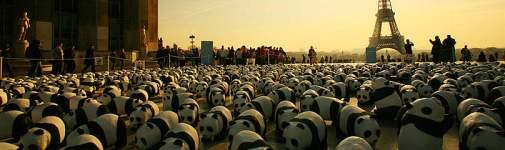panda marche climat
